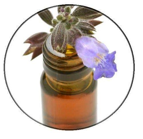 Sage (clary) essential oil – Organic