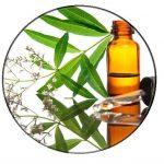 Exotic verbena essential oil