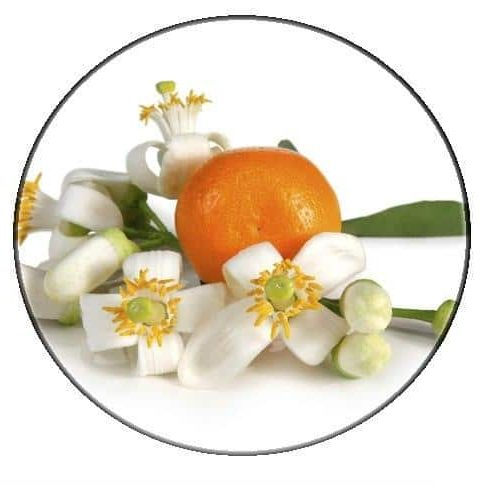 Orange blossom floral water – Organic