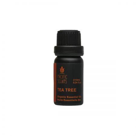 Tea tree bottle