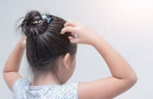 Read more about the article An essential oil against lice? Yes, it works…