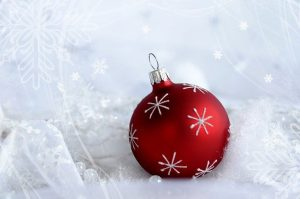 Read more about the article My essential oils for Christmas