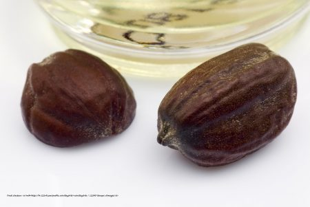 Jojoba oil for your skin and your hair